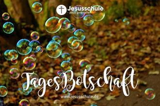 Heilung mit Farben - Angelika Lea