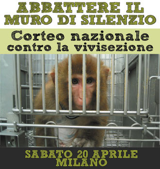 vivisezione dog angels onlus