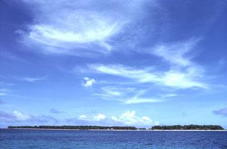 沖縄はどこに住む?