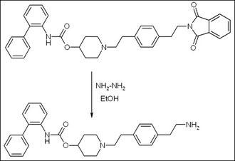 Primary amine - organic-reaction com