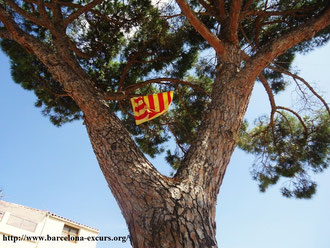 Флаги Каталонии