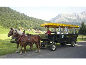 Pferdetaxi vor dem Pilatus