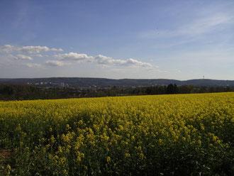 Im Hintergrund die Stadt Kaiserslautern