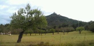 Ein 5km langer Aufstieg auf den Puig de Sant Salvador auf 509 m.ü.M hatte es in sich