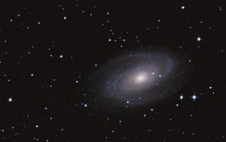 """M81 mit 8""""f/5 aufgenommen"""