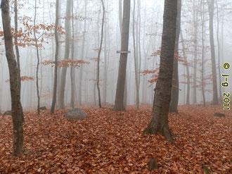 Hügelgrab 4 mit Mittelstein