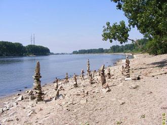 Der Rhein bei Lampertheim