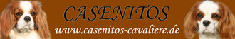 Casenitos Cavaliere