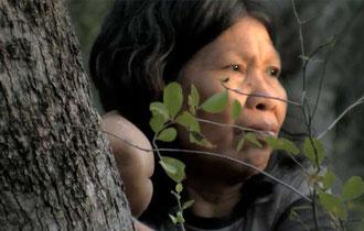 Mujer ayoreo. Sus familiares aislados se encuentran amenazados por la tala. © Survival