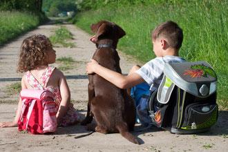 Entspannter Schulhund mit zwei glücklichen Schulkindern, die ihn umarmen