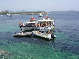 Escursioni in barca nelle bellissime coste di Alghero