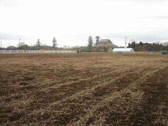 新規農園東からの全景。右上に白く見えるのは当農園のハウスです。