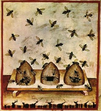 Tacuina sanitatis, XIV century. (wikipedia.org)