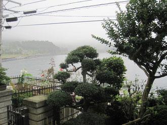 この庭のすぐ下まで津波が来た