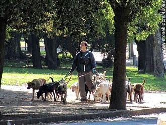 Braulio, un uruguayo en Buenos Aires presionando la foto.