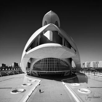 Palacio de las Artes Reina Sofia | Juanjo Fernández