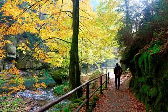 Herrlicher Wanderweg an der Kamnitz zwischen Edmunds- und Wilder Klamm