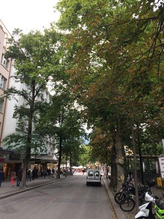 Bahnhofstrasse in Chur, vor der Baumfällaktion (August 2015)