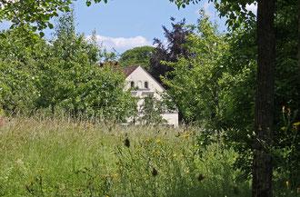 Idylle im Comenius-Garten