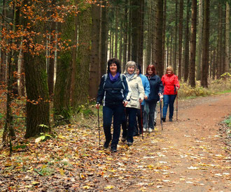 Nordic Walking in Ehrenfriedersdorf