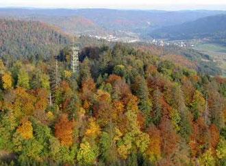 Bild aufgenommen und zur Verfügung gestellt von J. Maier; 2005
