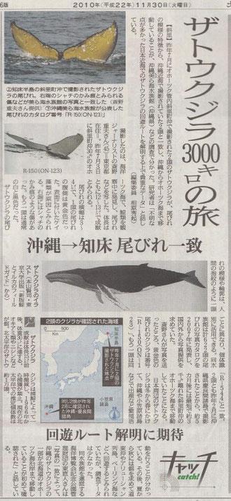 北海道新聞 2010/11/30