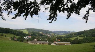 Blick nach Hertigswalde