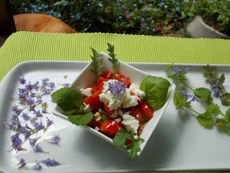 Essen Dekoration unterschätzte wildkräuter zum essen dekorieren gegen