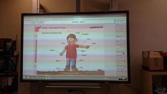 Auch mit dem neuen interaktiven Whiteboard haben wir heute gearbeitet...