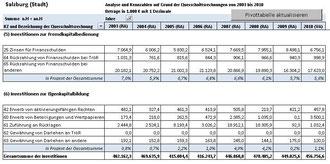 Investitionsverlauf Stadt Salzburg 2003-2010 (Bild 2)