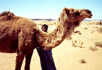Achmeds Bruder posierte mit dem Kamel
