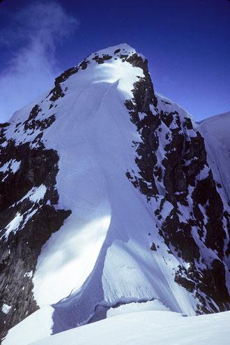Jungfrau 4158 m vom Rottalhorn 3969 m