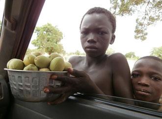 enfant vendant noix de karité
