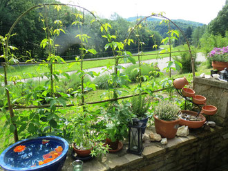 Sichtschutz Terrasse 4