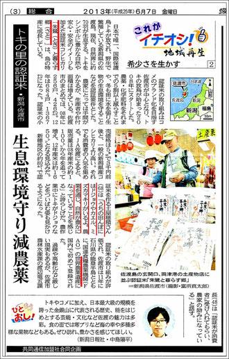 愛媛新聞 2013.6.7掲載