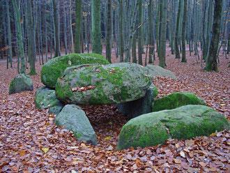 Megalithgrabanlage nahe der Waldhalle an den Wissower Klinken