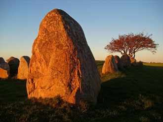 Großsteingrab Nobbin nahe Kap Arkona im Sonnenuntergang