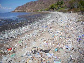 スンバワ島の海岸を埋め尽くす多量の漂着ごみ