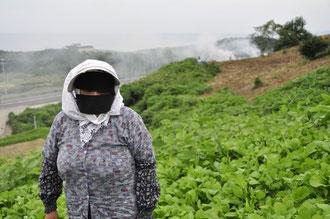 焼き畑と由利地方独特のふくべ姿の女性