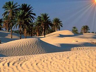 Le Sahara à Douz