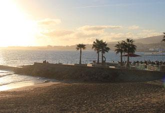 Beach Portixol