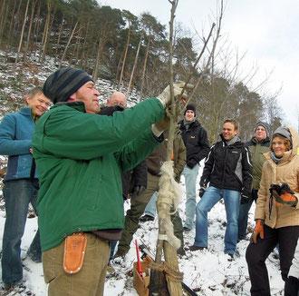 Baumschnitt in der Praxis mit Ralf Latour (Foto: C. Schauroth)