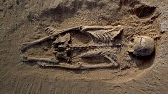 Lo scheletro di un uomo rinvenuto a Nataruk, sull'antica sponda del lago Turkana, è la più antica scoperta di un massacro preistorico.