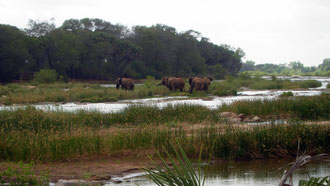 Tsavo East Nationak Park