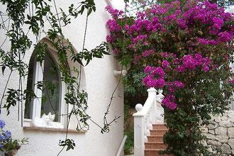 Blumenbogen, Villa Gandia Hills
