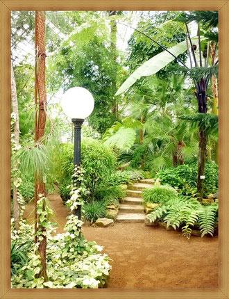 """Сейчас на месте """"аптекарского огорода"""" Ботанический сад."""