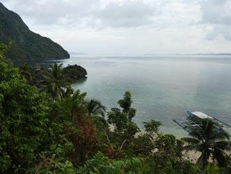 Tropische Insel