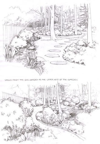 Sketch Design Mhairi Auld Landscape Gardener Garden Design
