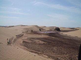 La Mauritanie Et Son Fameux Banc Darguin Dunes Aventure