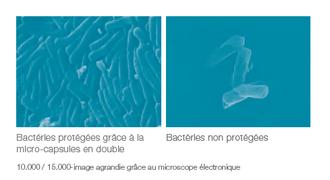 PROBIOTIC 12 de LR Un procédé de fabrication breveté : PRO12 Les pro biotiques sont des micro-organismes vivants qui peuplent notre système digestif . Probiotiques PRO12 vers une santé plus solide !